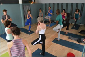vijnana yoga de boom